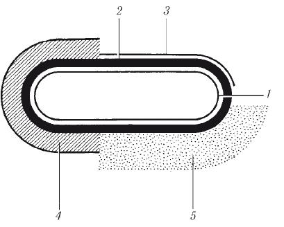 bakterii3